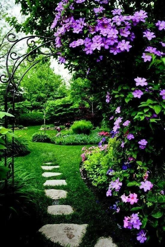 Záhrada,ktorá ťa nikdy neomrzí...divoká a krásna - Obrázok č. 79
