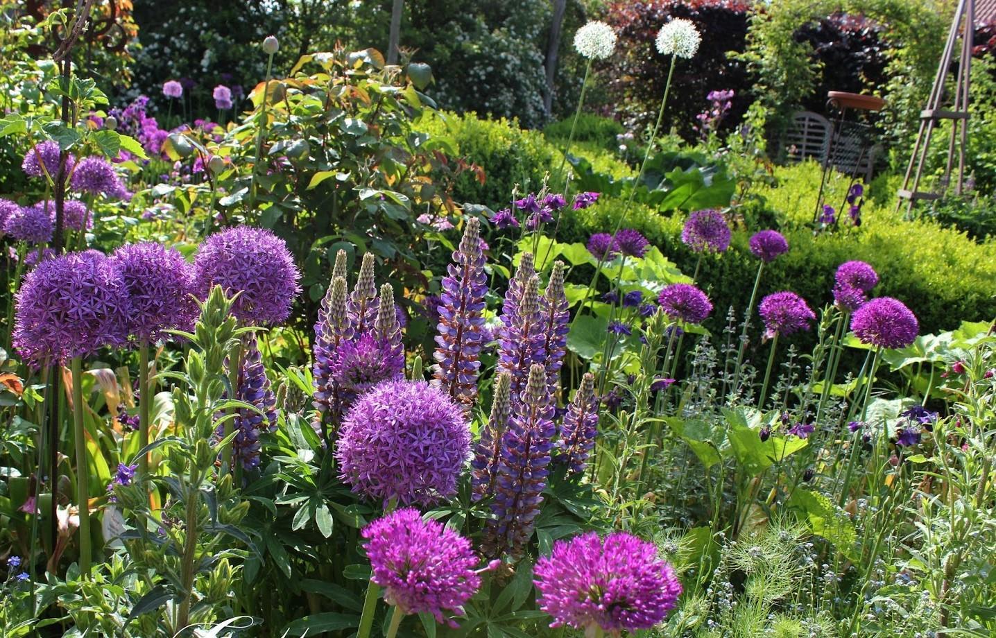 Záhrada,ktorá ťa nikdy neomrzí...divoká a krásna - Obrázok č. 83
