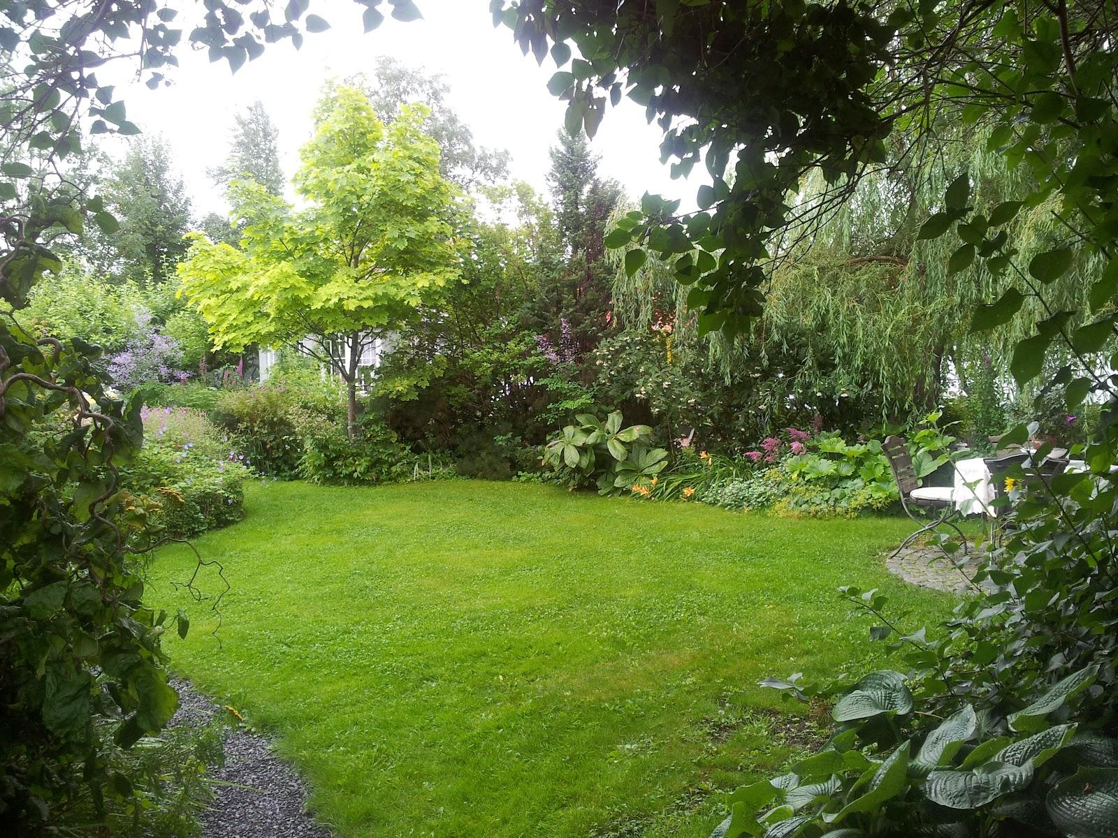 Záhrada,ktorá ťa nikdy neomrzí...divoká a krásna - Obrázok č. 86