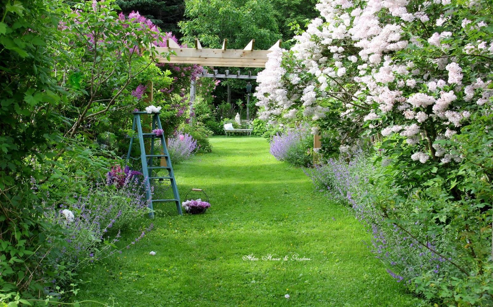 Záhrada,ktorá ťa nikdy neomrzí...divoká a krásna - Obrázok č. 88
