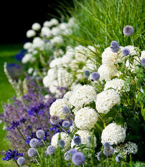 Záhrada,ktorá ťa nikdy neomrzí...divoká a krásna - Obrázok č. 90