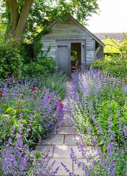 Záhrada,ktorá ťa nikdy neomrzí...divoká a krásna - Obrázok č. 93