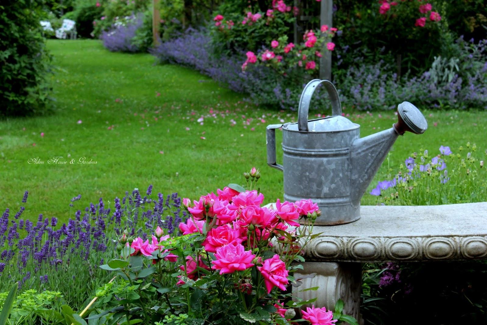 Záhrada,ktorá ťa nikdy neomrzí...divoká a krásna - Obrázok č. 98