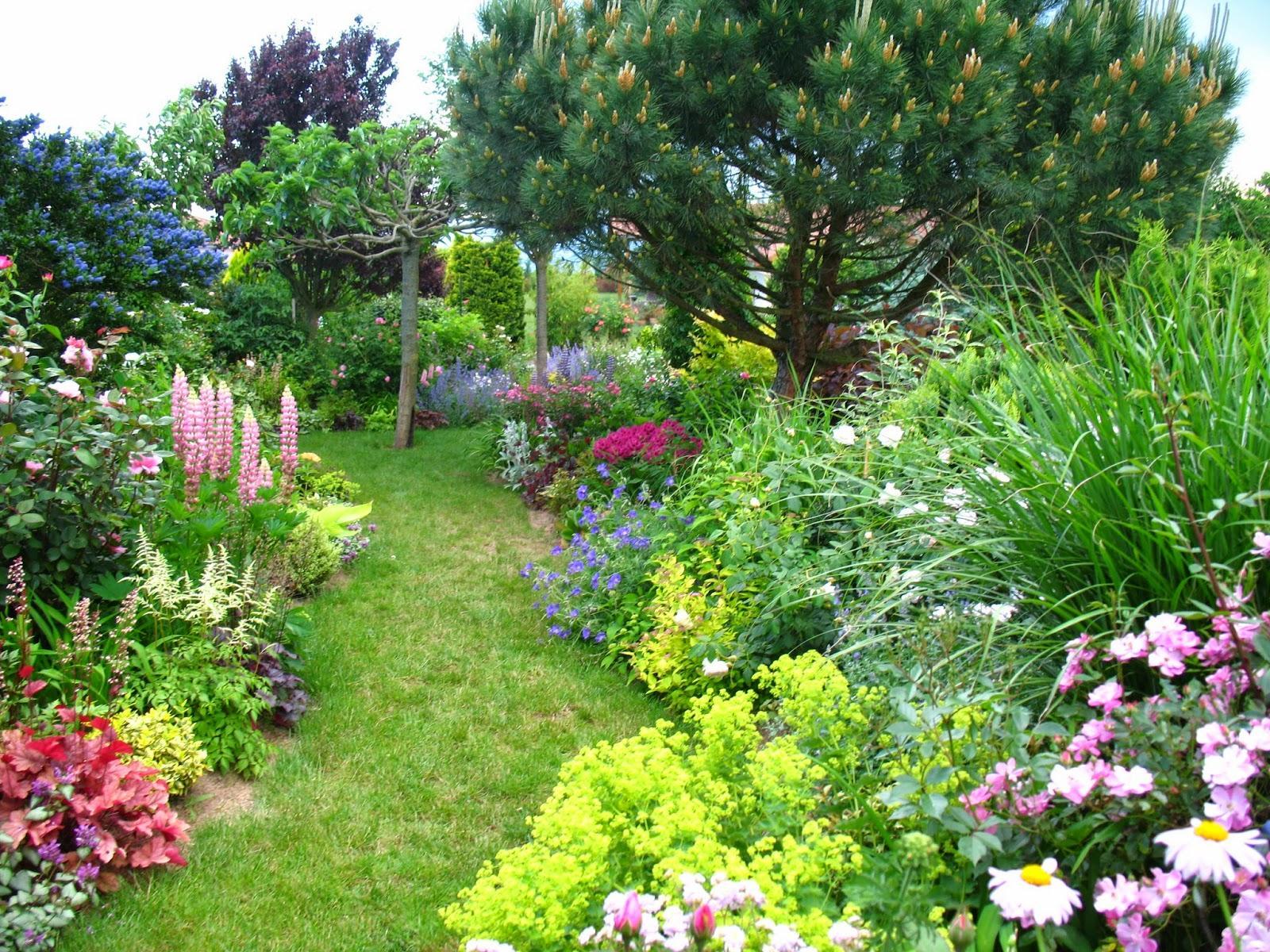 Záhrada,ktorá ťa nikdy neomrzí...divoká a krásna - Obrázok č. 103