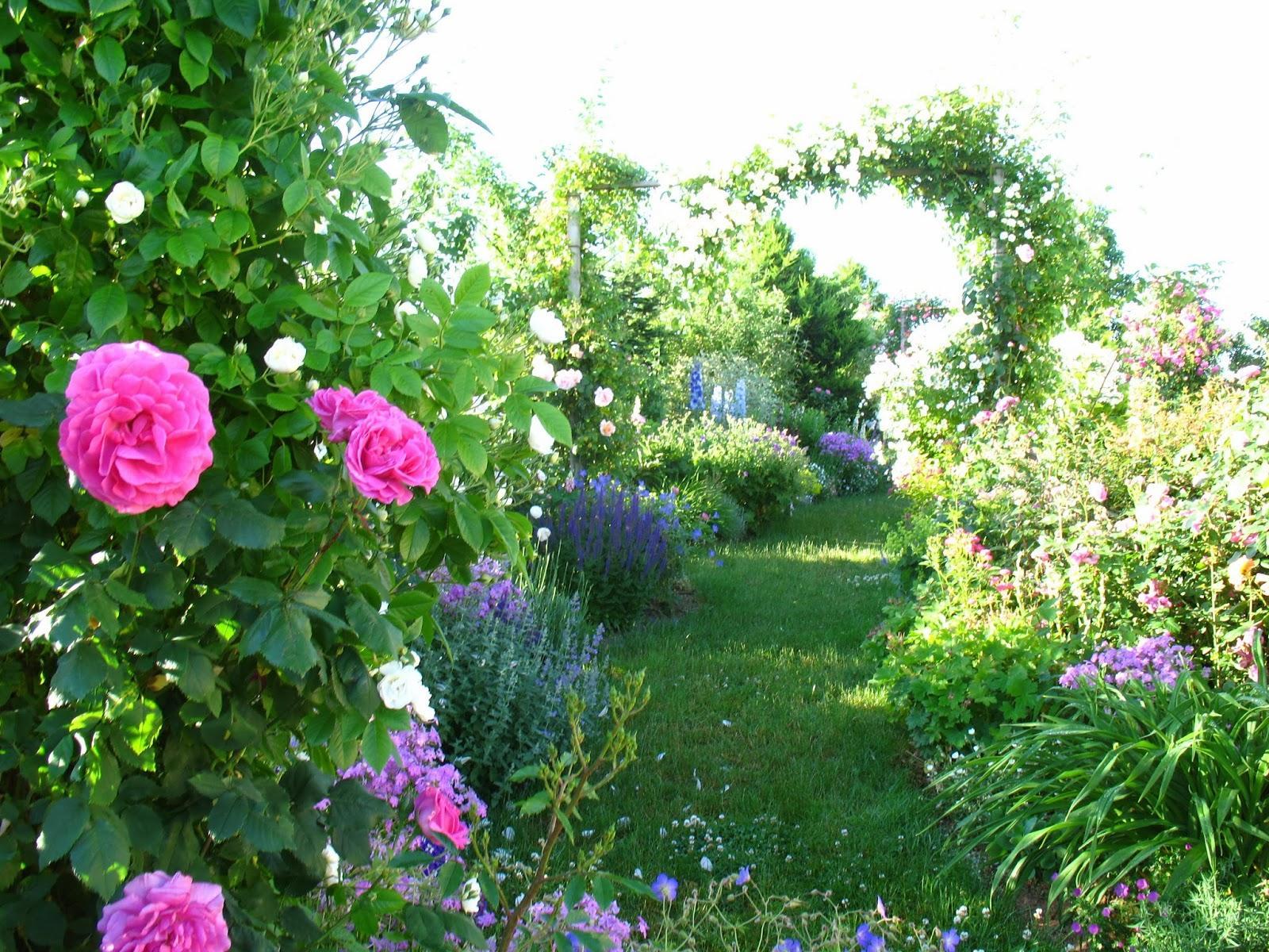 Záhrada,ktorá ťa nikdy neomrzí...divoká a krásna - Obrázok č. 104