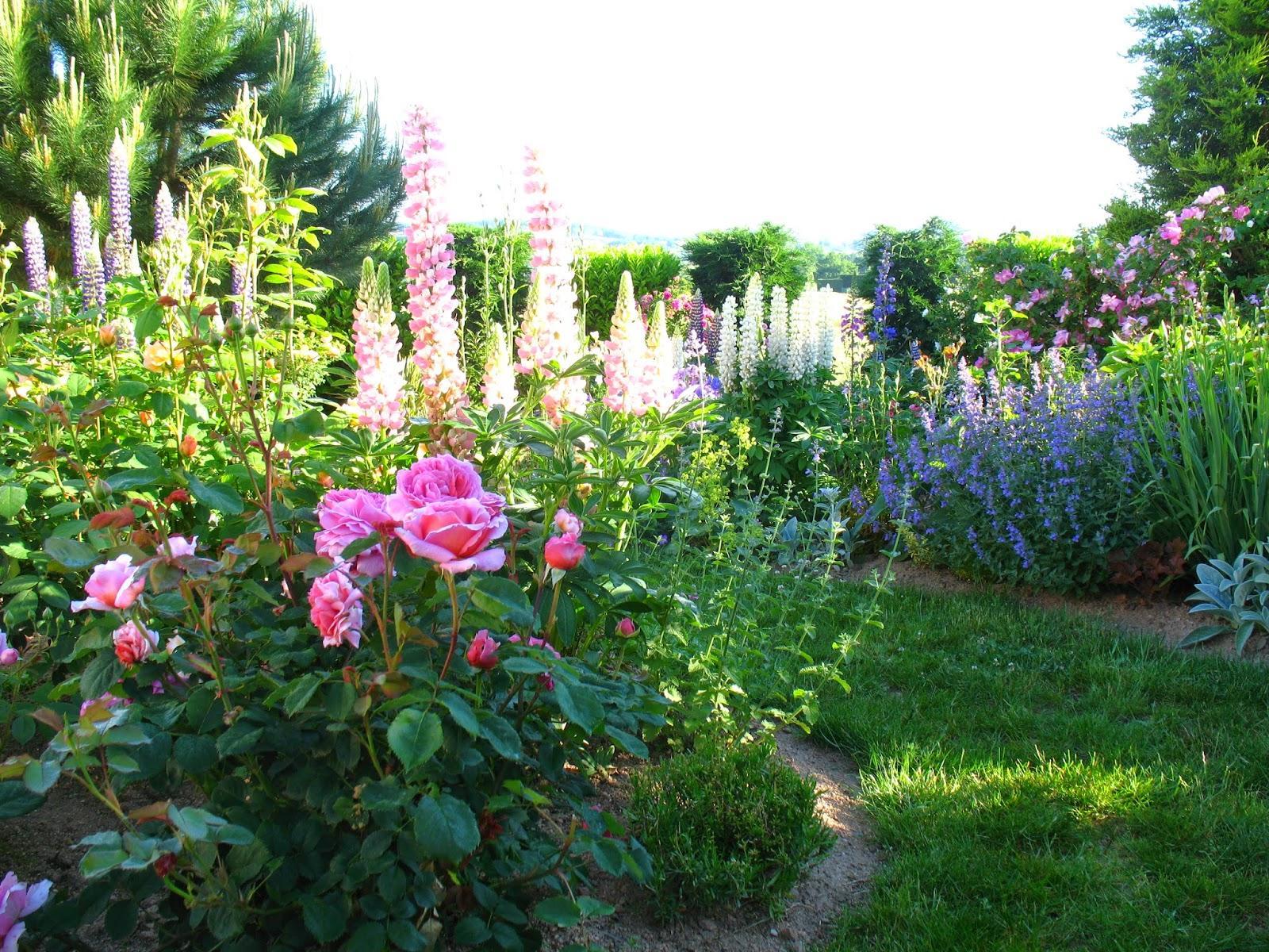 Záhrada,ktorá ťa nikdy neomrzí...divoká a krásna - Obrázok č. 105