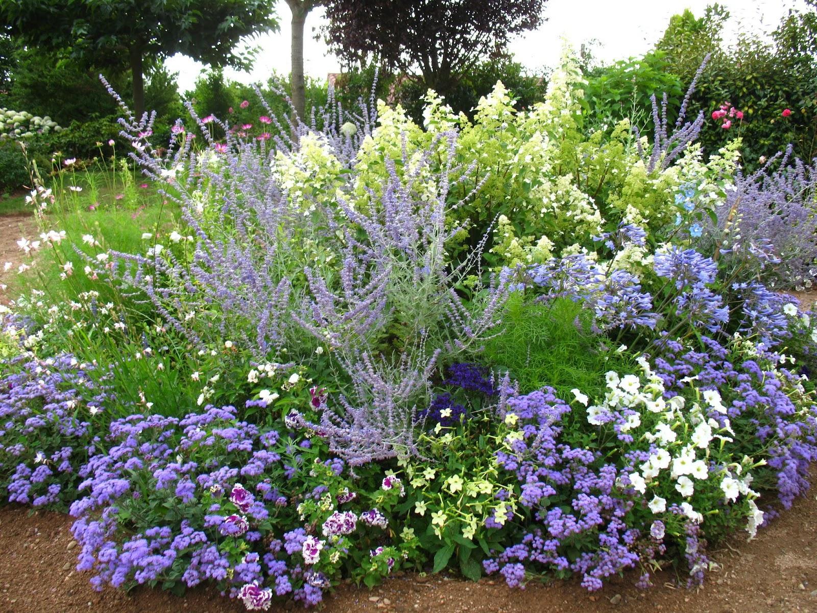 Záhrada,ktorá ťa nikdy neomrzí...divoká a krásna - Obrázok č. 106