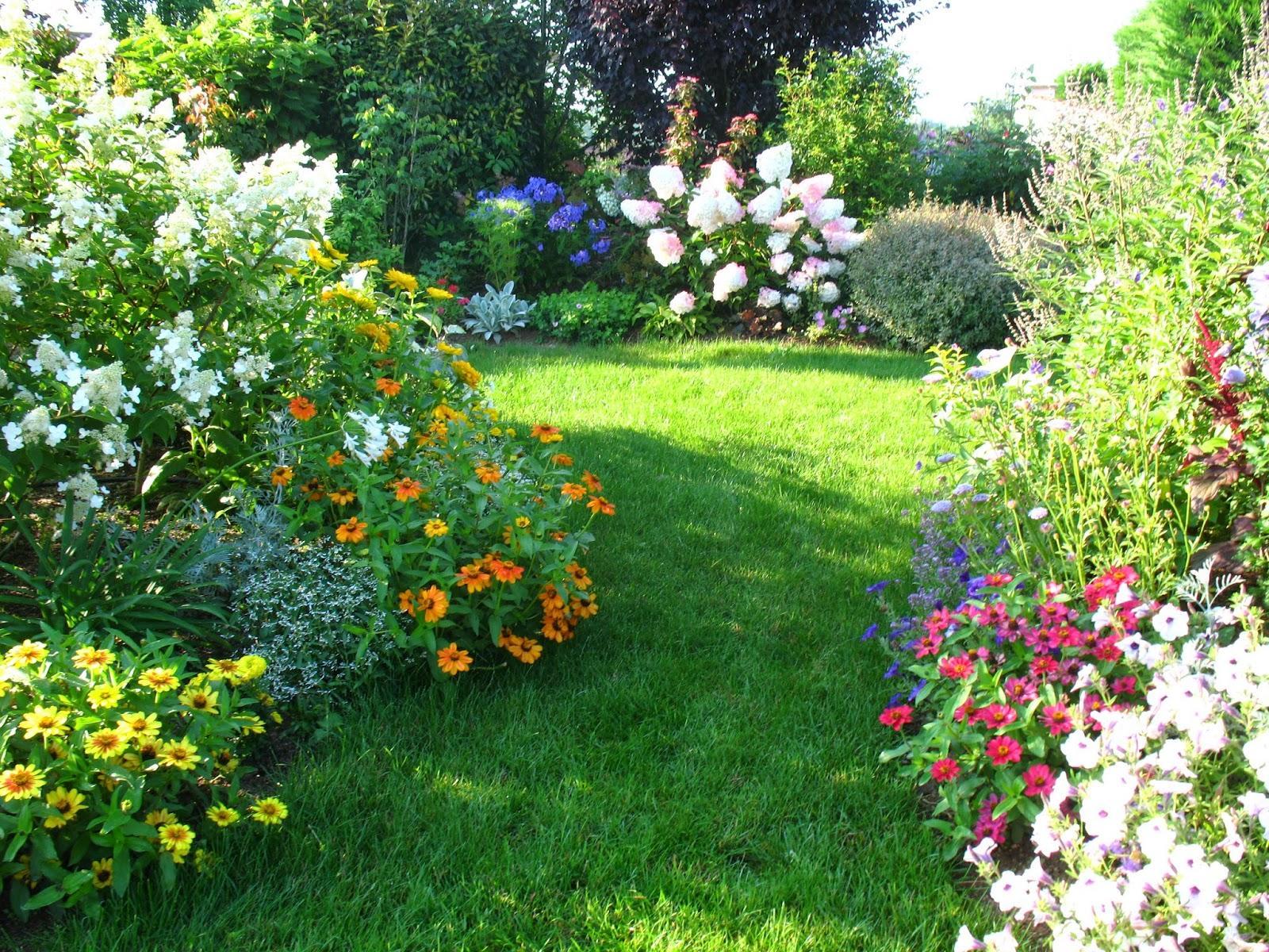 Záhrada,ktorá ťa nikdy neomrzí...divoká a krásna - Obrázok č. 107