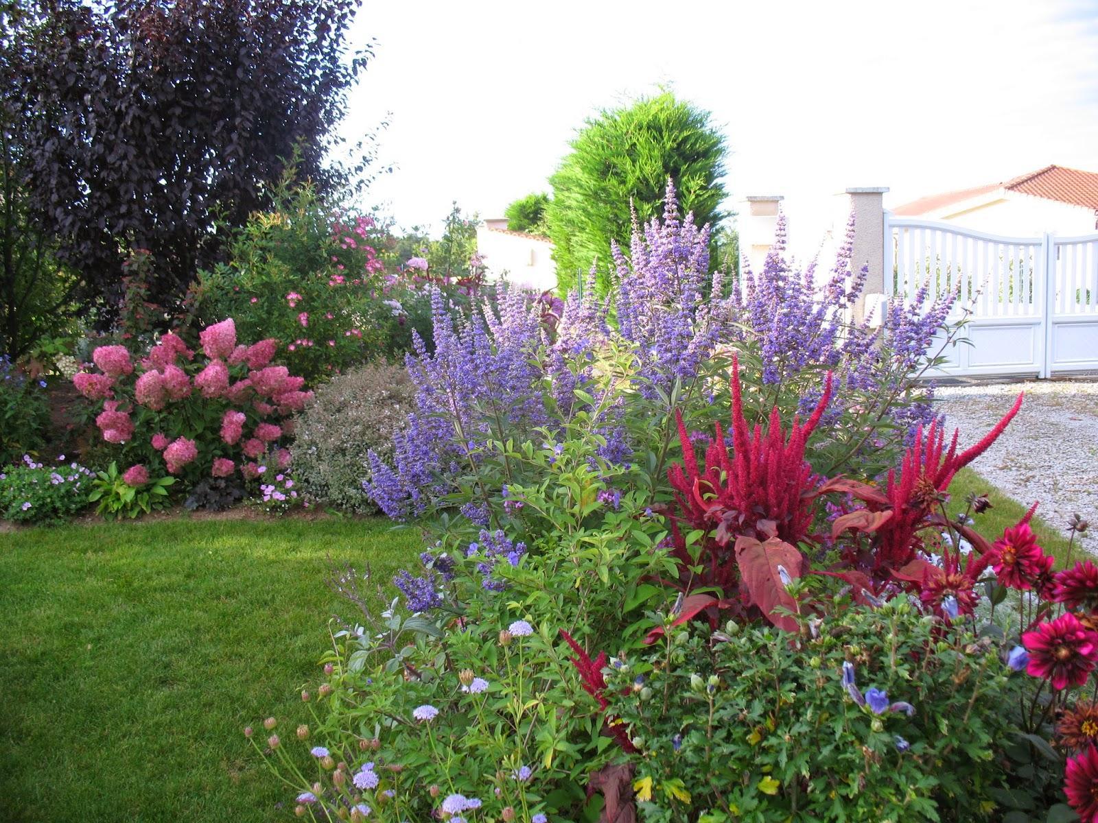 Záhrada,ktorá ťa nikdy neomrzí...divoká a krásna - Obrázok č. 109