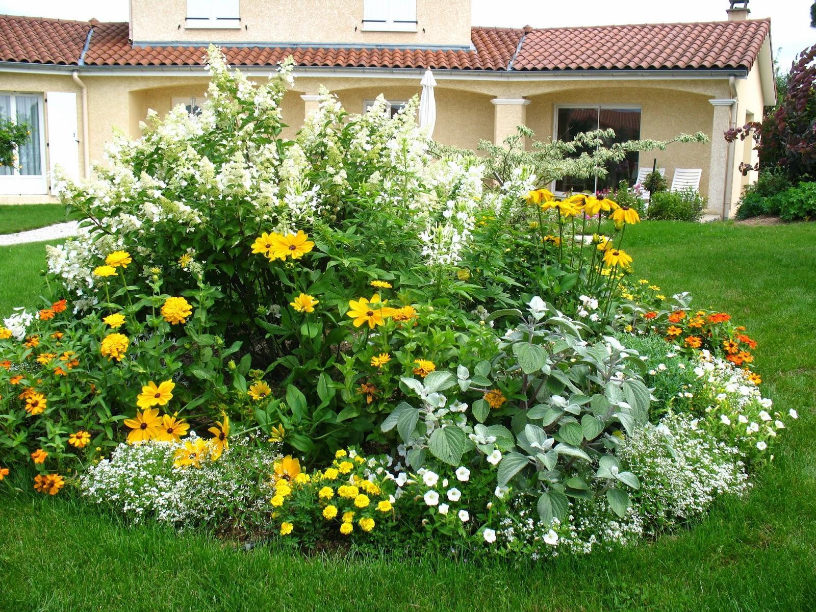 Záhrada,ktorá ťa nikdy neomrzí...divoká a krásna - Obrázok č. 110