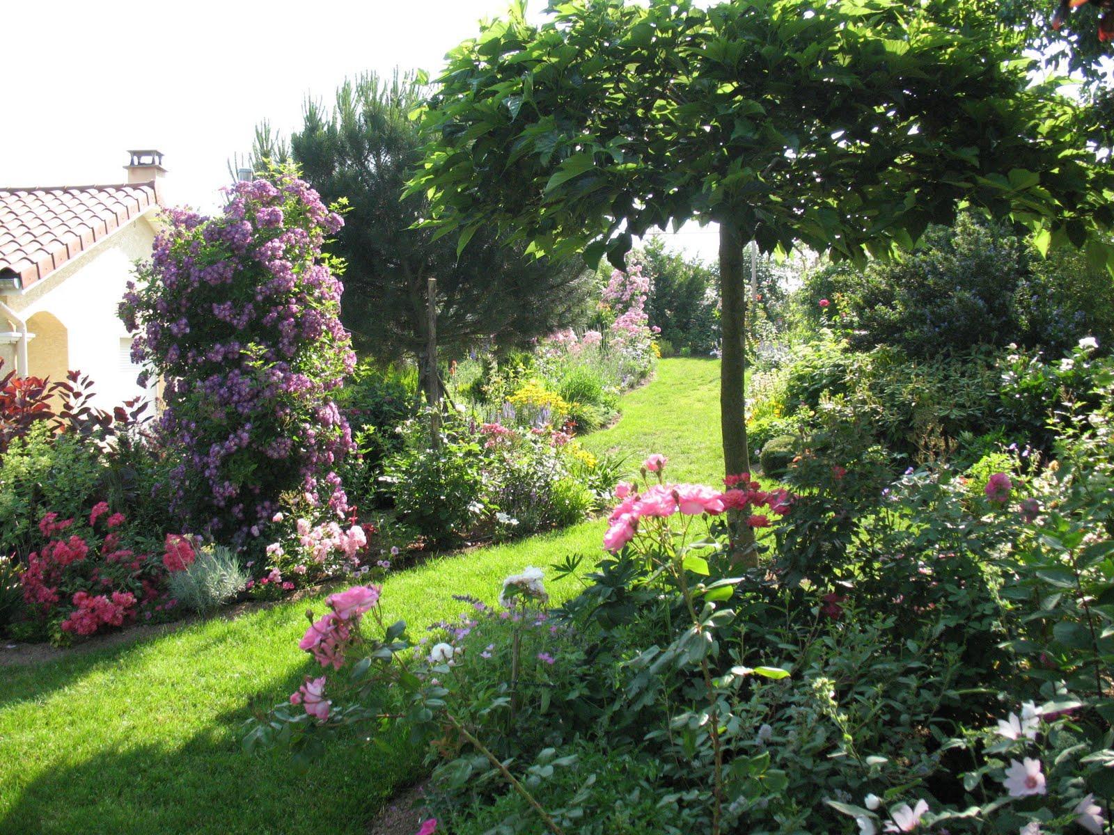 Záhrada,ktorá ťa nikdy neomrzí...divoká a krásna - Obrázok č. 111