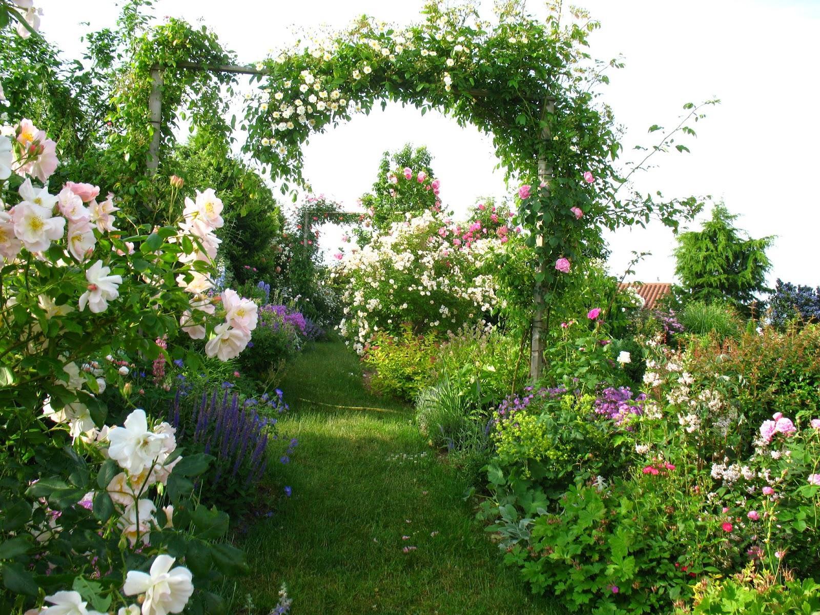 Záhrada,ktorá ťa nikdy neomrzí...divoká a krásna - Obrázok č. 113