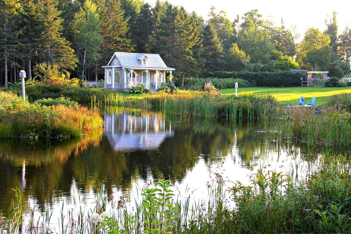 Záhrada,ktorá ťa nikdy neomrzí...divoká a krásna - Obrázok č. 115