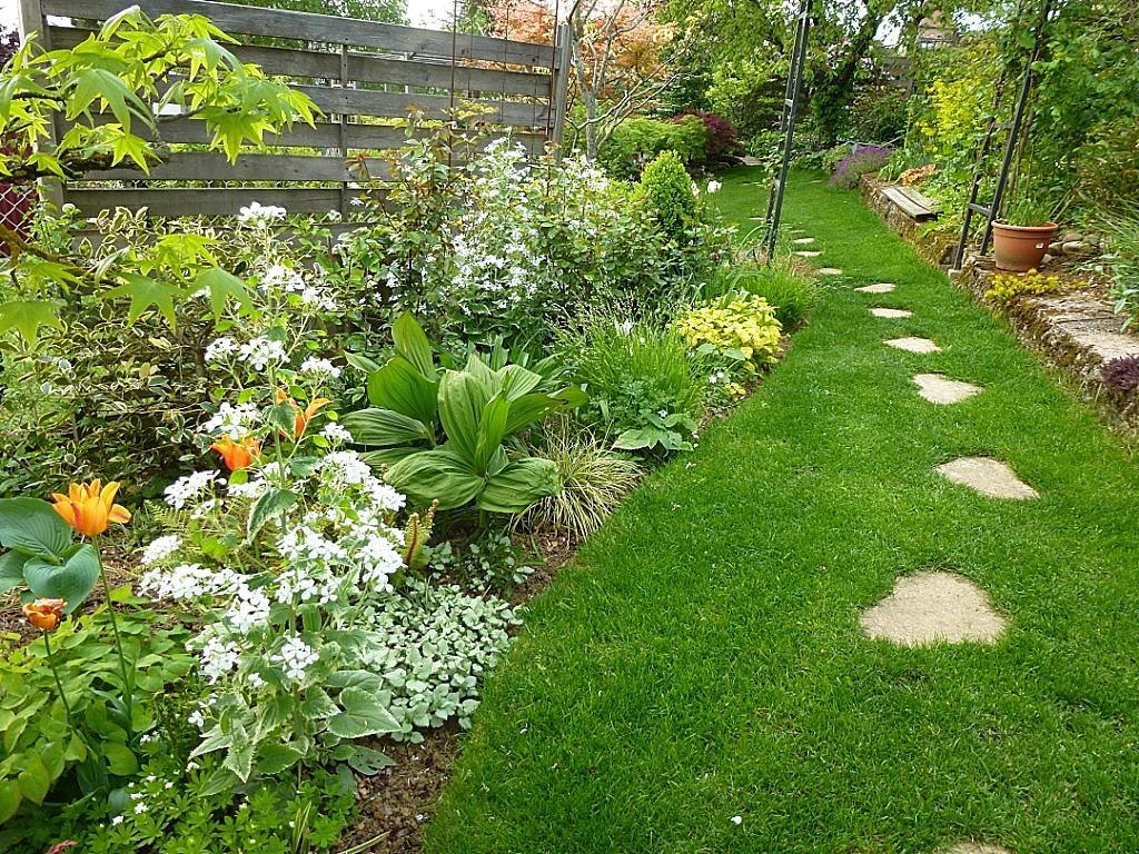 Záhrada,ktorá ťa nikdy neomrzí...divoká a krásna - Obrázok č. 162