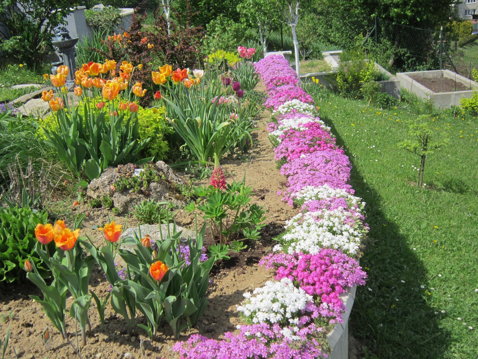 Pozvanie do našej jarnej záhrady - Obrázok č. 14