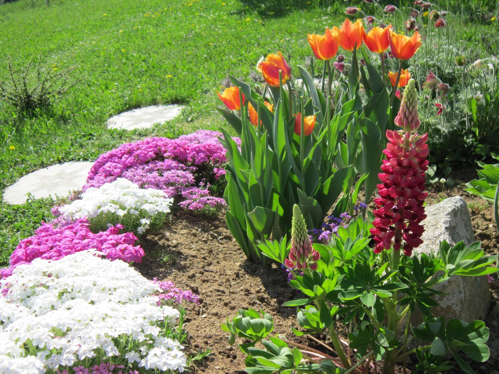 Pozvanie do našej jarnej záhrady - Obrázok č. 15