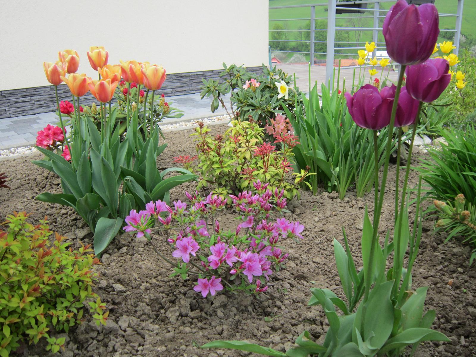 Pozvanie do našej jarnej záhrady - Obrázok č. 35