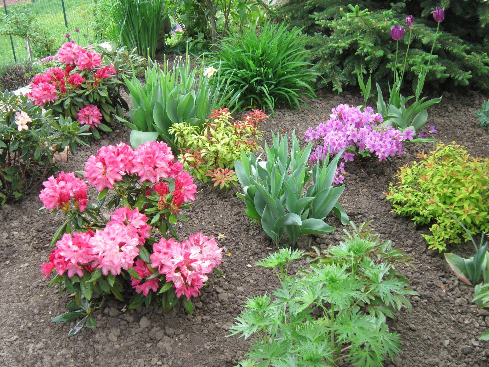 Pozvanie do našej jarnej záhrady - Obrázok č. 36