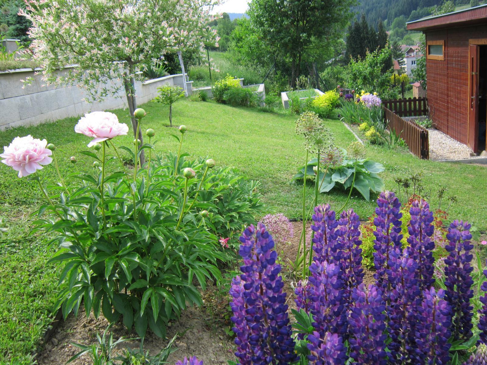 Pozvanie do našej jarnej záhrady - Obrázok č. 44