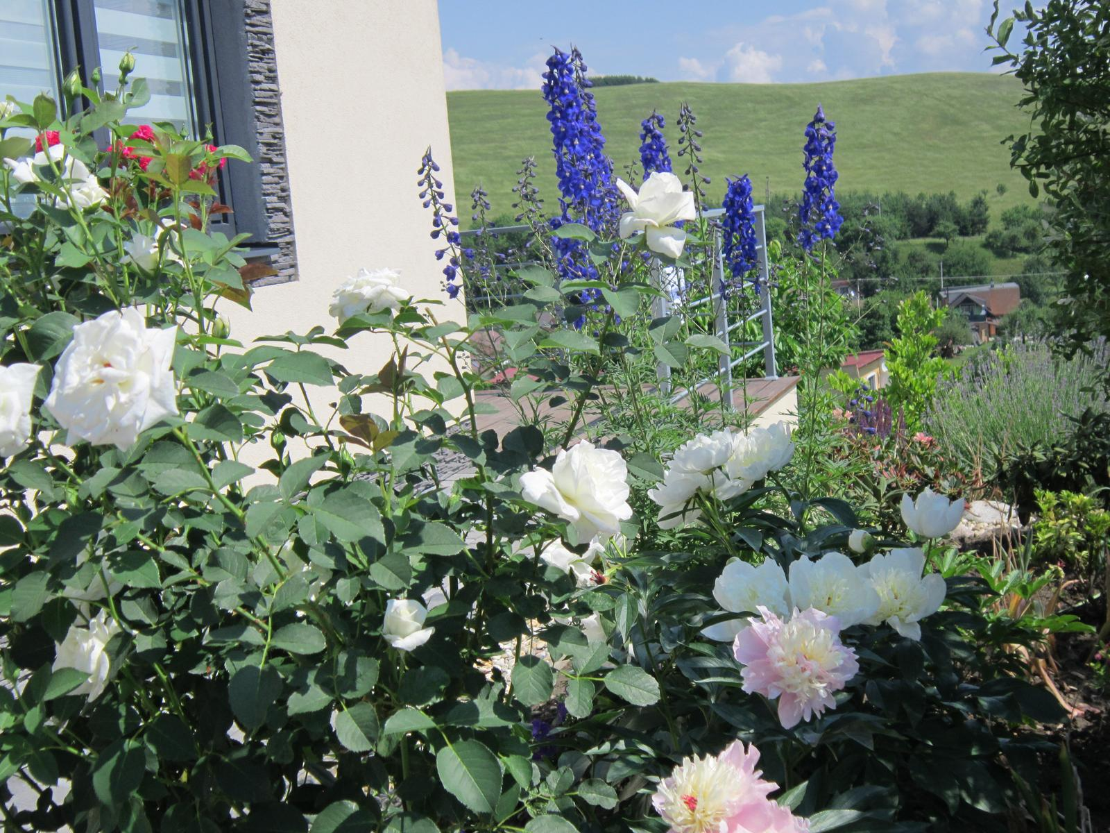 Pozvanie do našej jarnej záhrady - Obrázok č. 79
