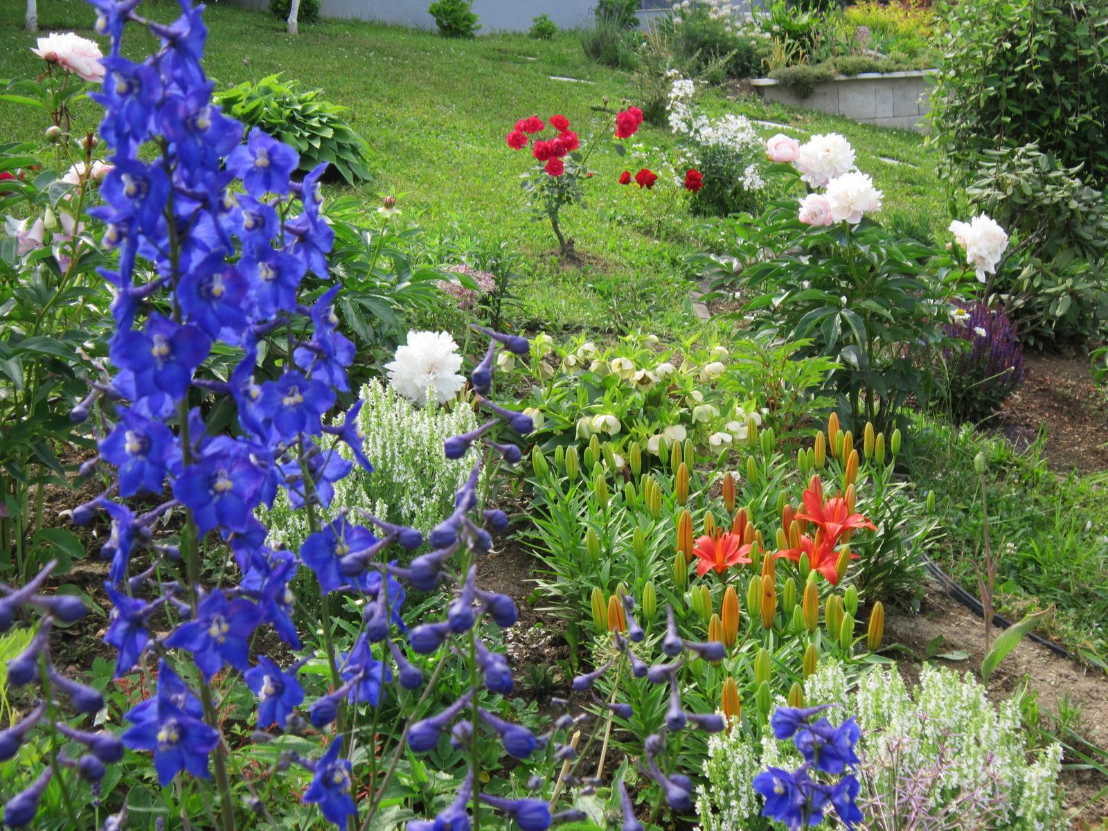 Pozvanie do našej jarnej záhrady - Obrázok č. 80