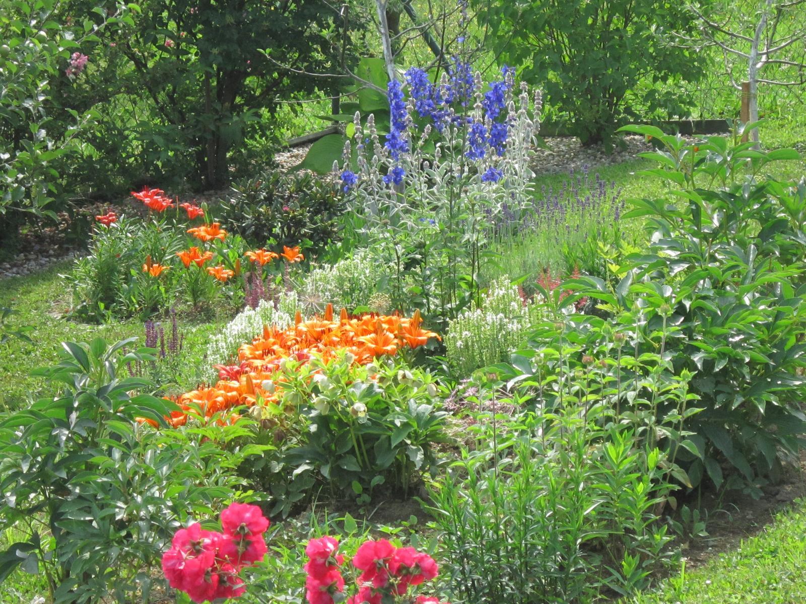 Pozvanie do našej jarnej záhrady - Obrázok č. 89