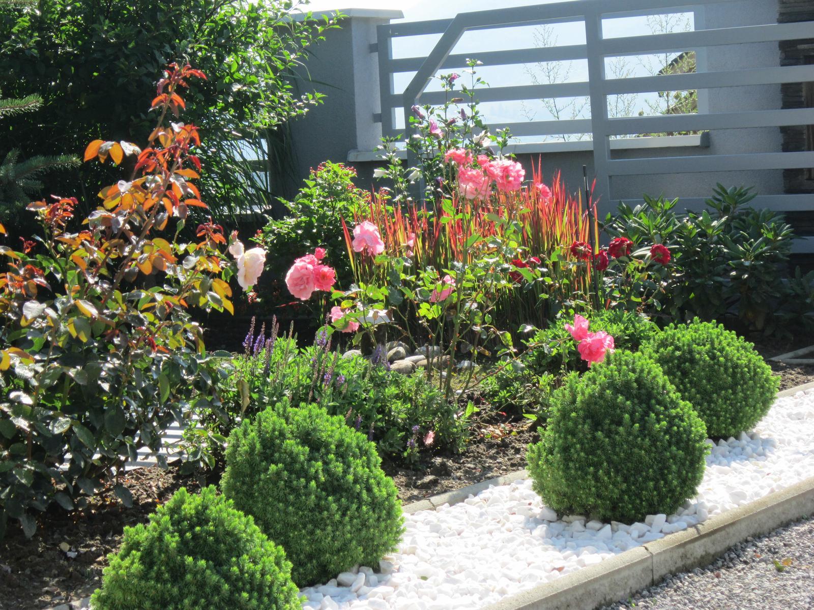Moja záhrada...ako šiel čas - Obrázok č. 266