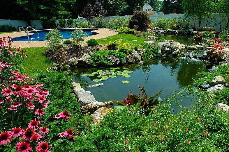 Záhrada,ktorá ťa nikdy neomrzí...divoká a krásna - Obrázok č. 184