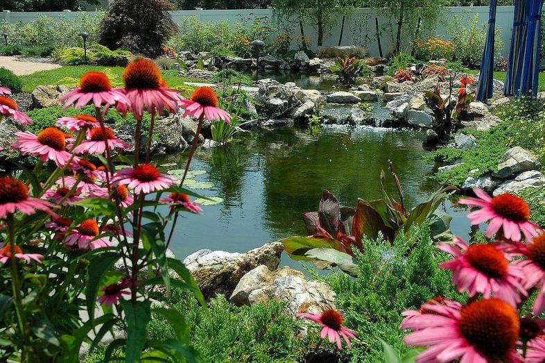 Záhrada,ktorá ťa nikdy neomrzí...divoká a krásna - Obrázok č. 185