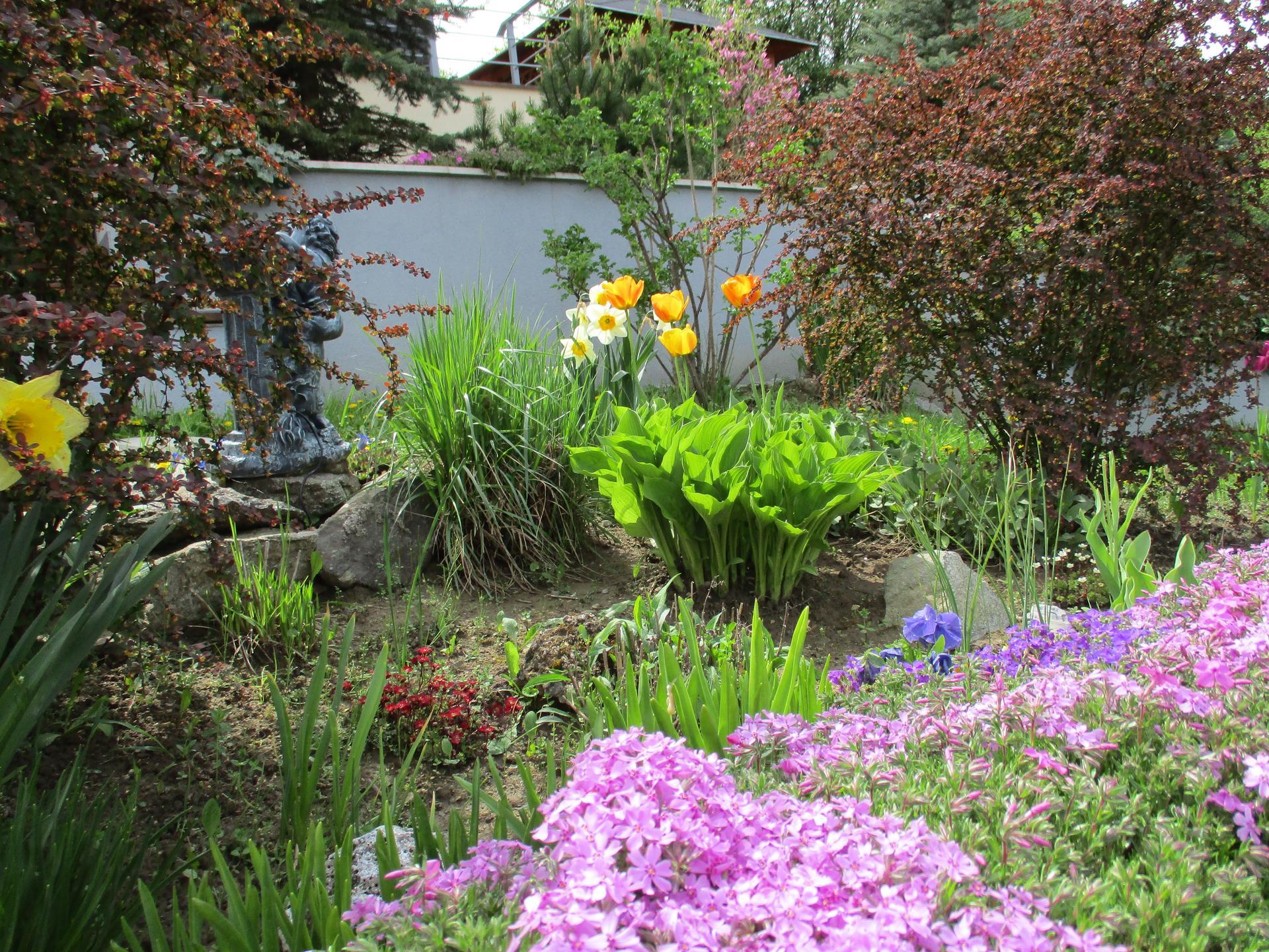 Jar v našej záhrade - Obrázok č. 26