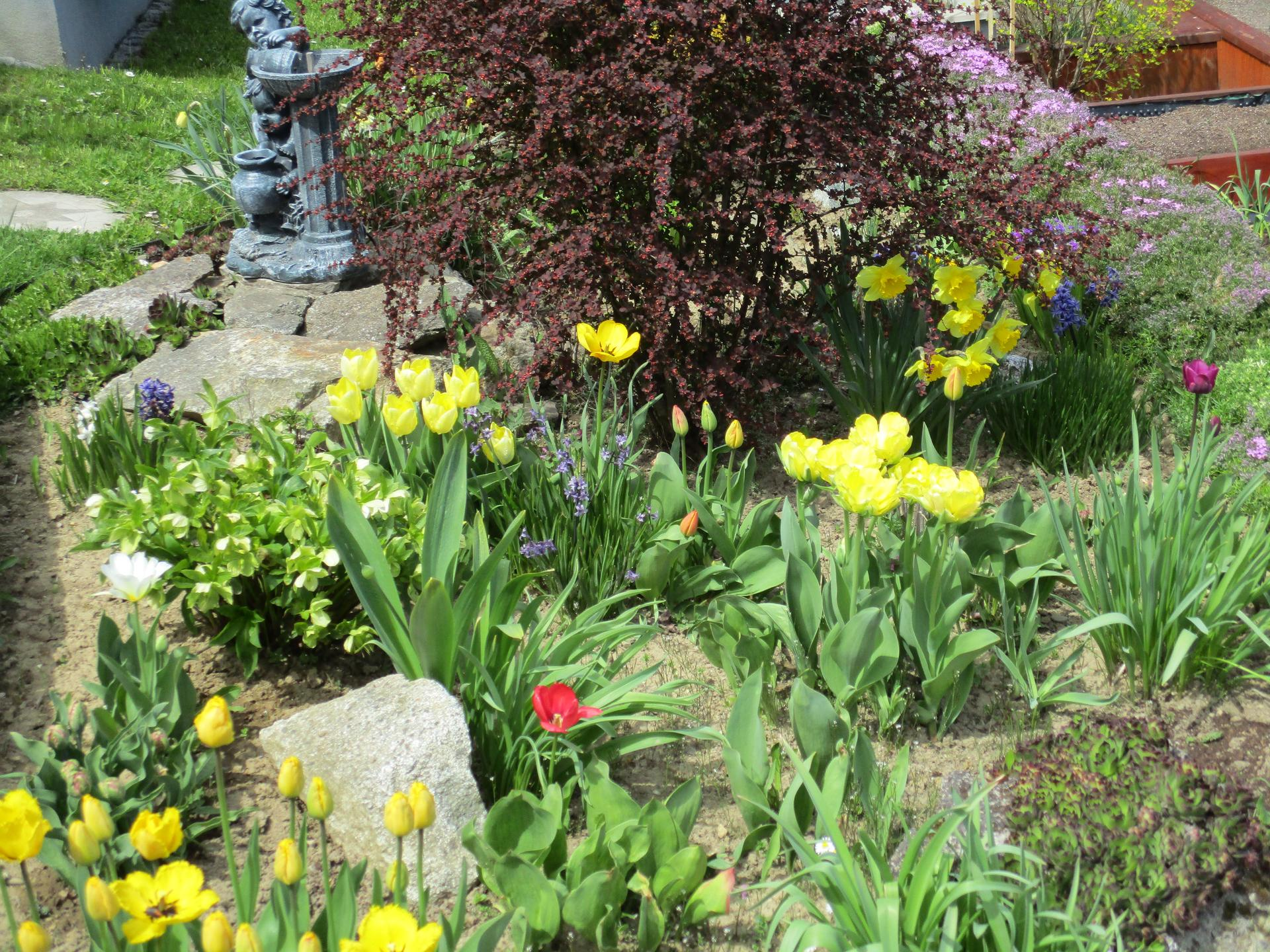 Jar v našej záhrade - Obrázok č. 28