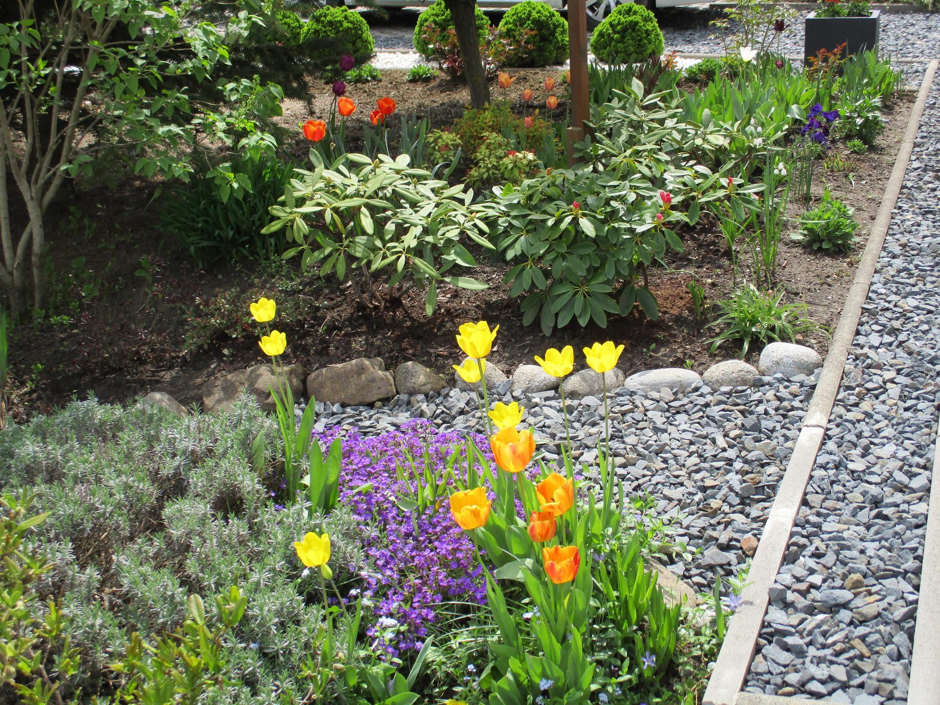 Čo je nové v našej záhrade - Obrázok č. 29