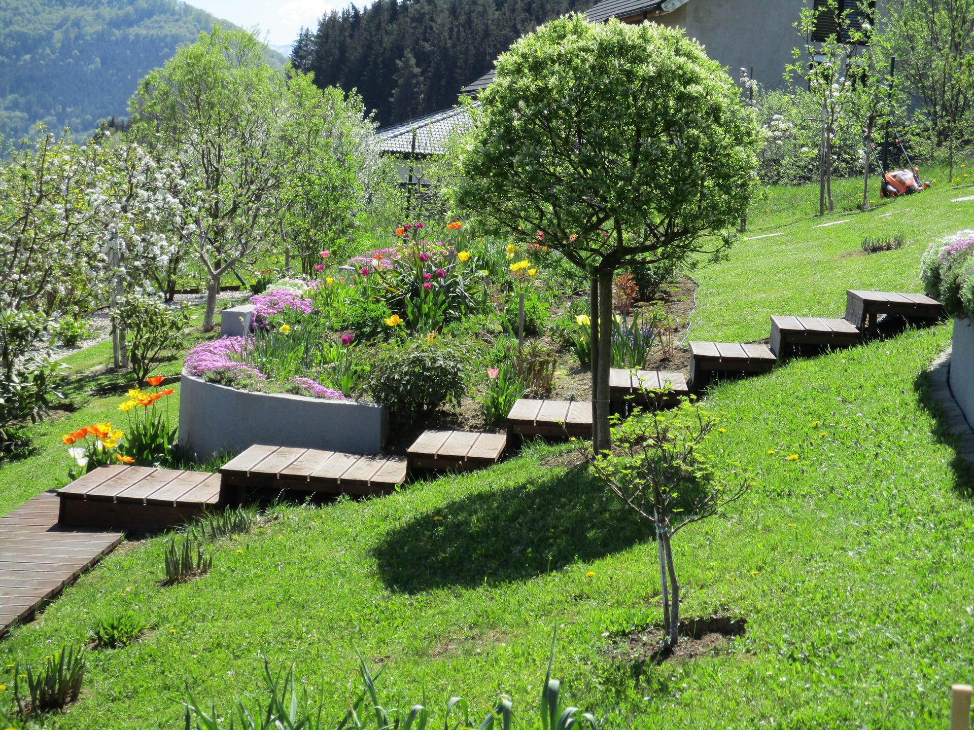Čo je nové v našej záhrade - Obrázok č. 37