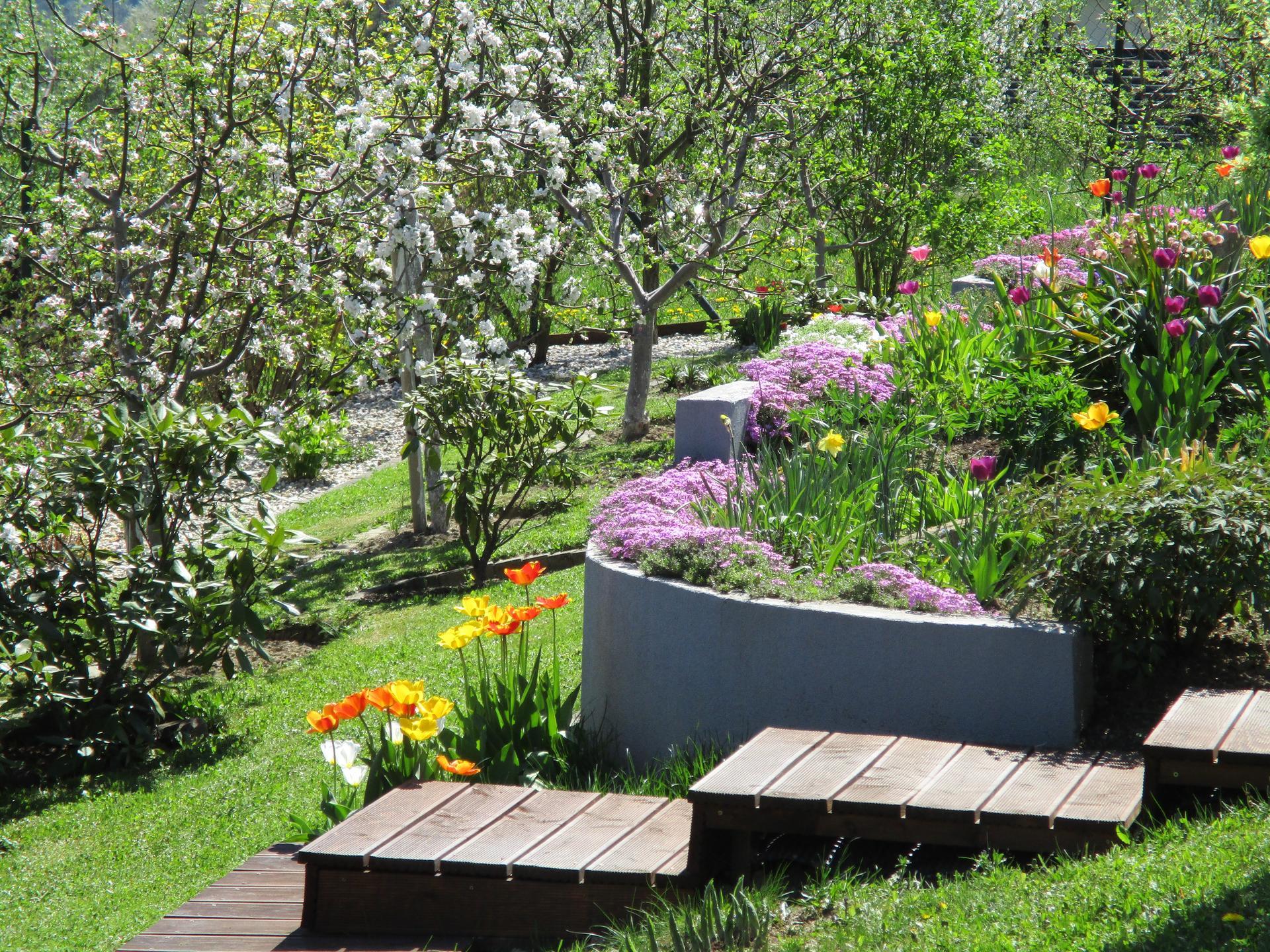 Jar v našej záhrade - Obrázok č. 40