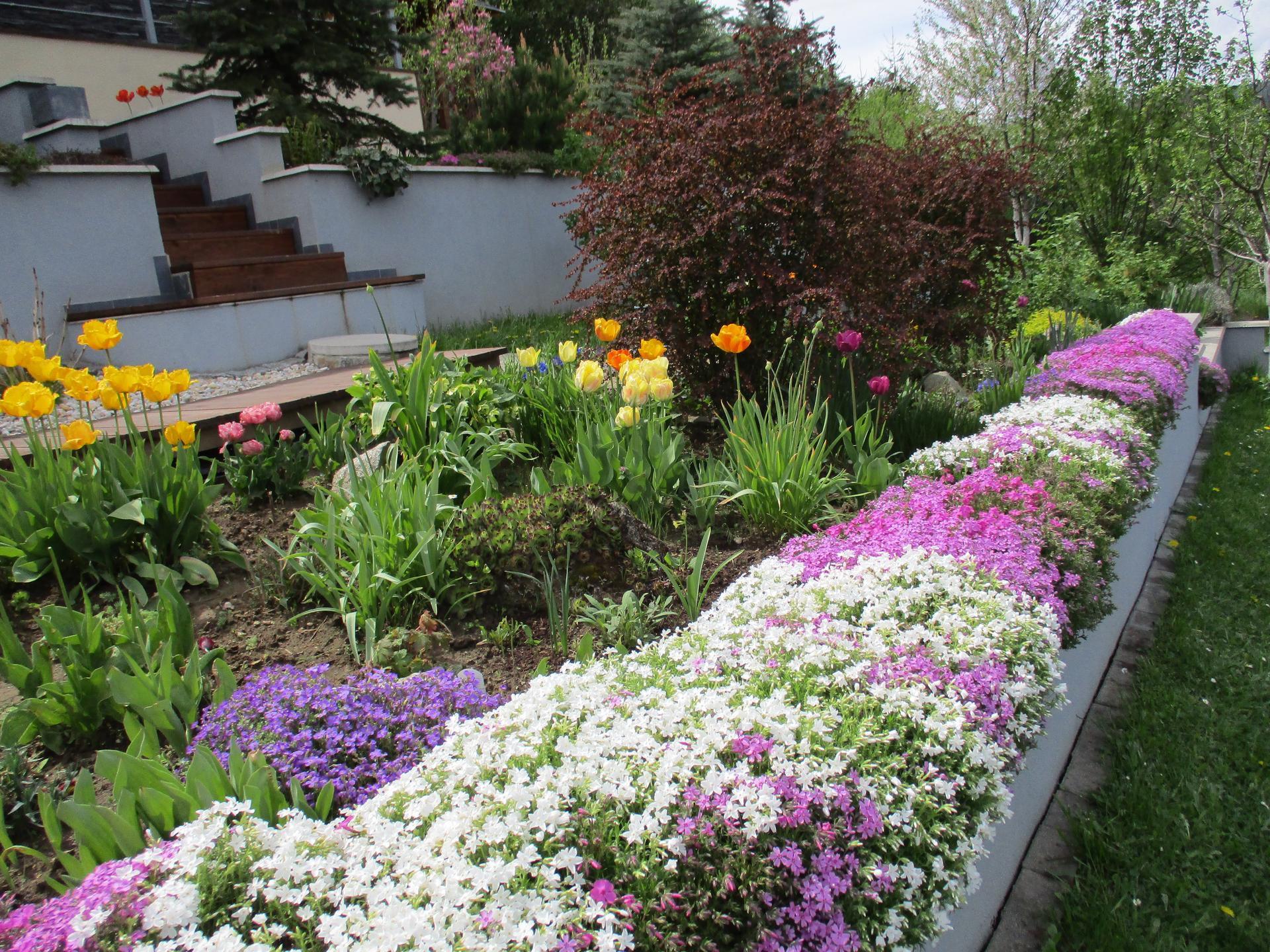 Jar v našej záhrade - Obrázok č. 47