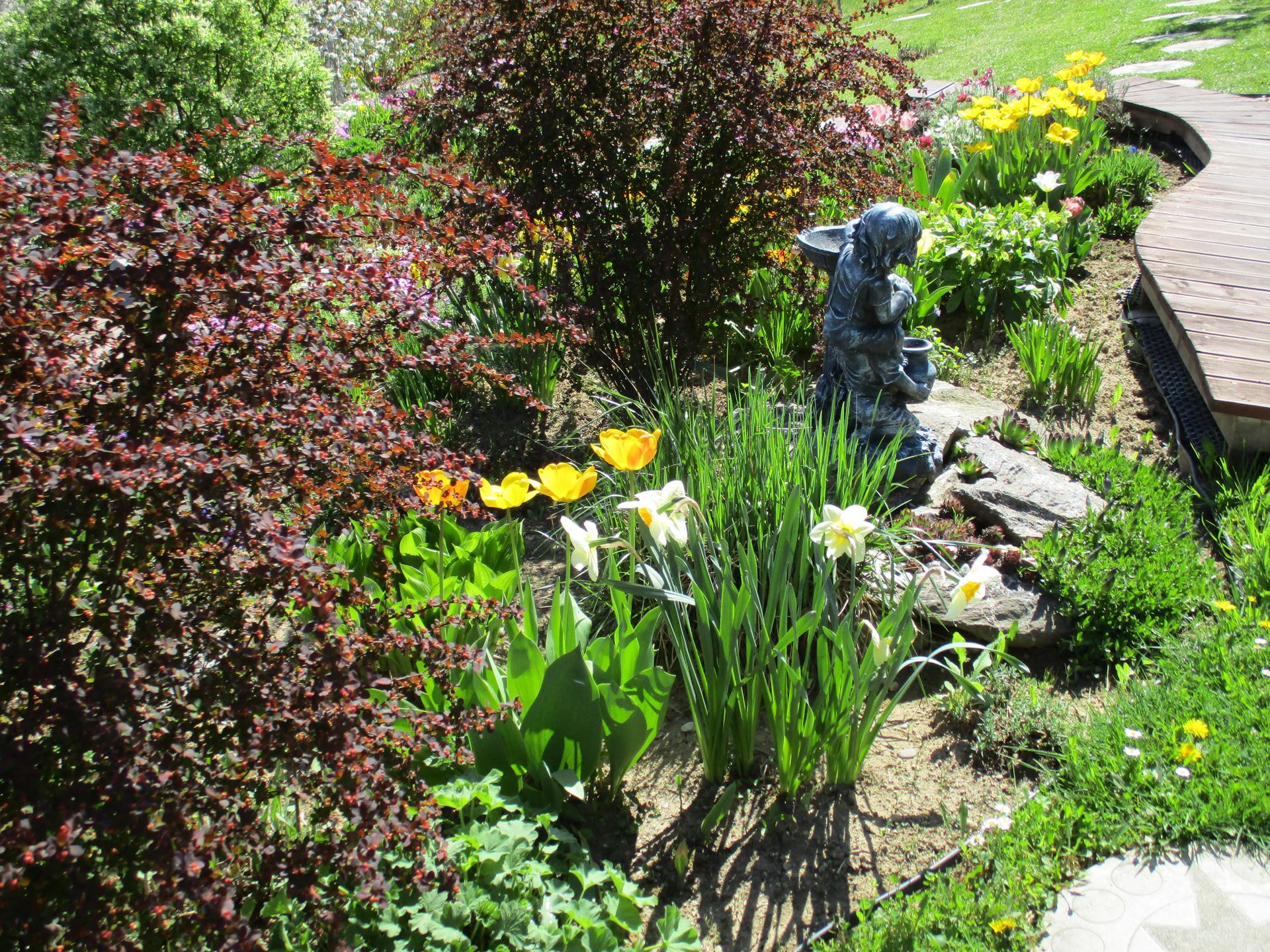 Jar v našej záhrade - Obrázok č. 51