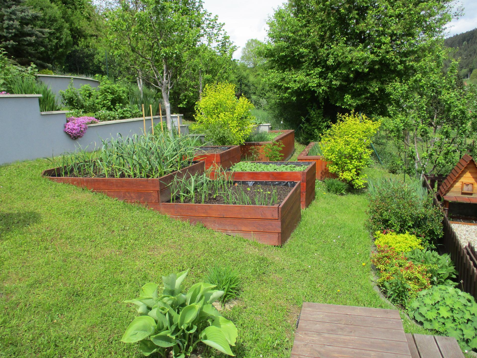 Jar v našej záhrade - Naše vyvýšené záhony vo svahu :)