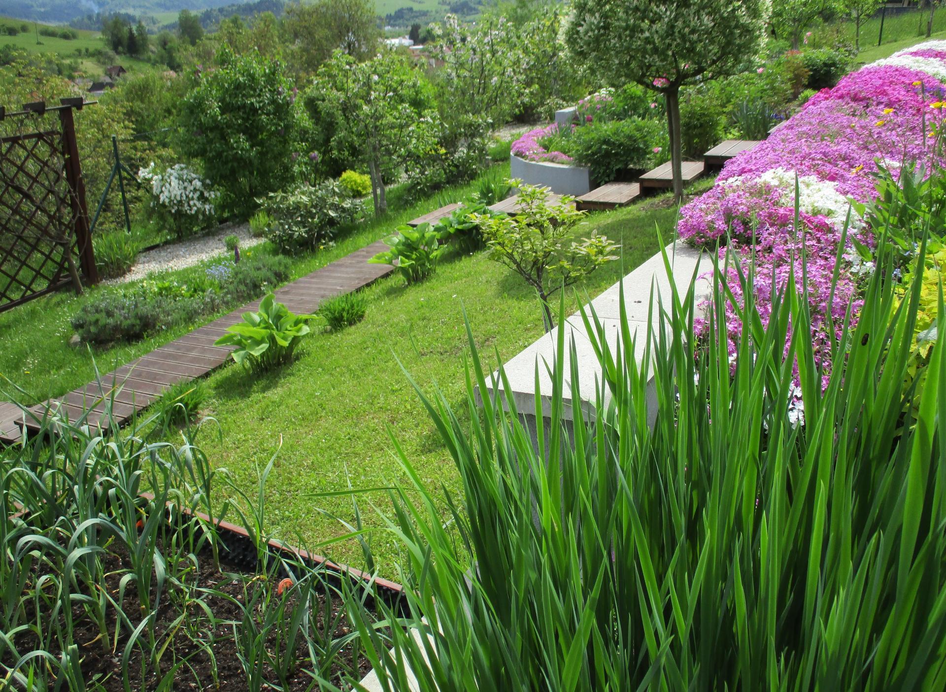 Jar v našej záhrade - Obrázok č. 63