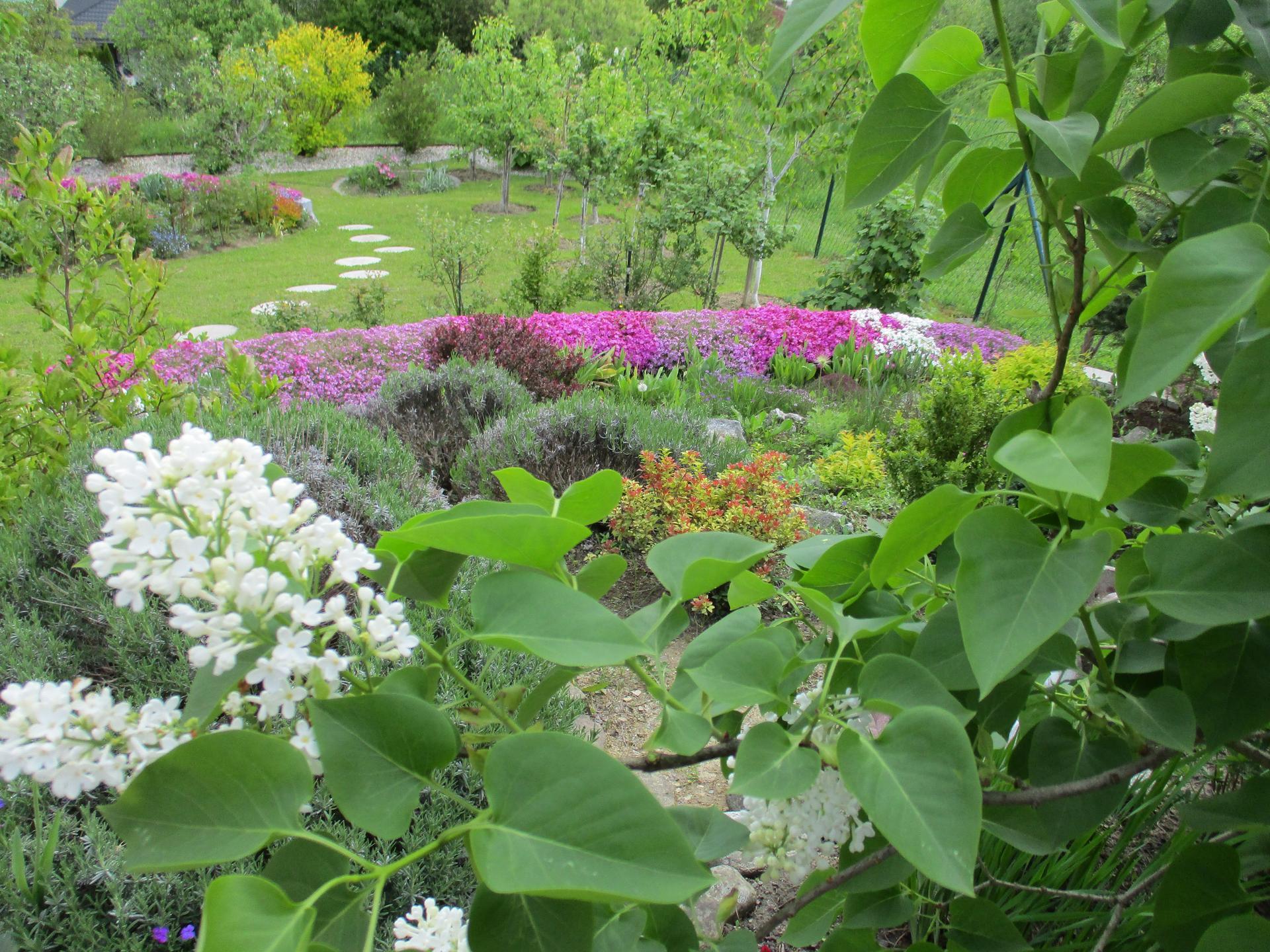 Jar v našej záhrade - Obrázok č. 67