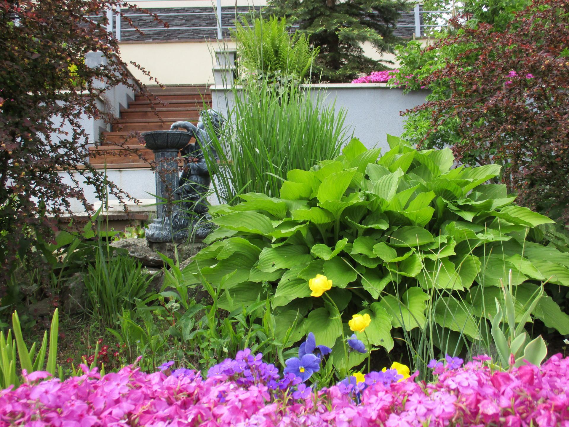 Jar v našej záhrade - Obrázok č. 69