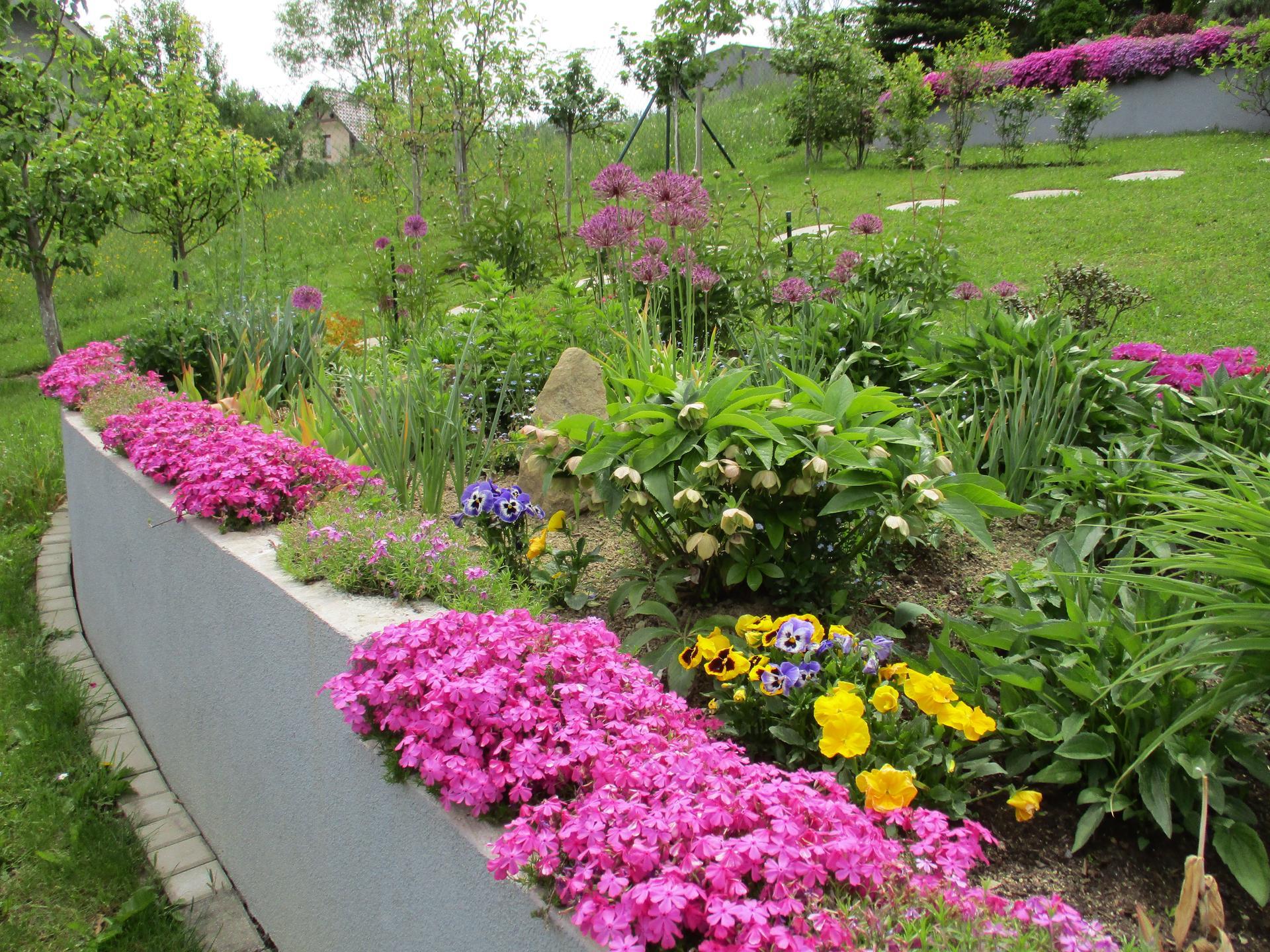 Čo je nové v našej záhrade - Obrázok č. 72