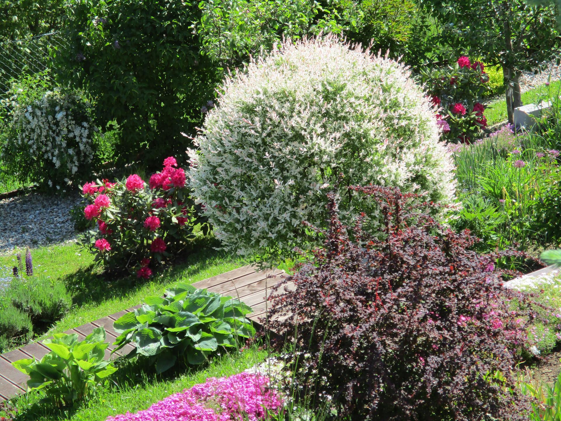 Jar v našej záhrade - Obrázok č. 78