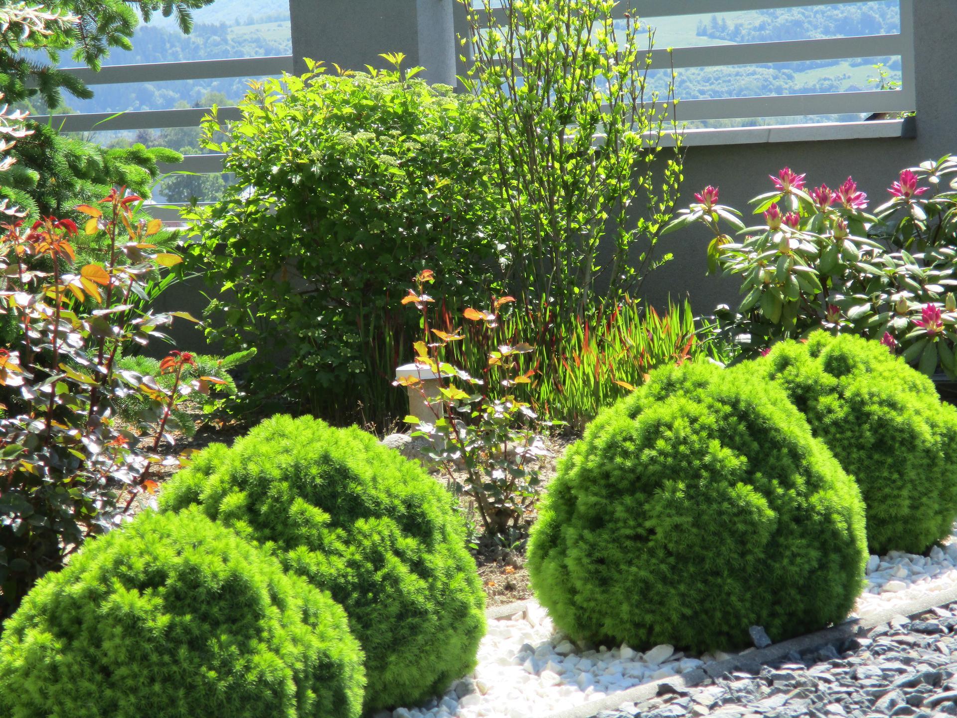 Jar v našej záhrade - Obrázok č. 77