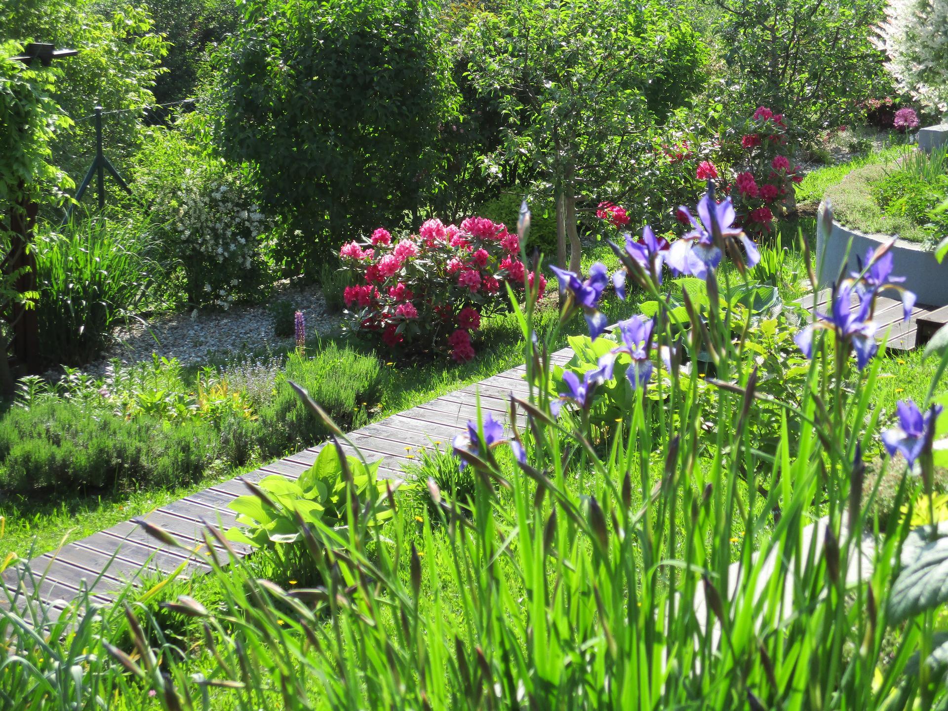 Jar v našej záhrade - Obrázok č. 82