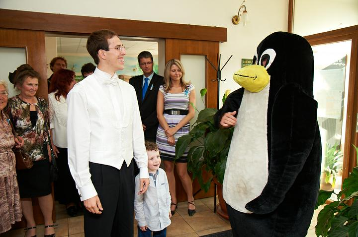 Druhé překvapení na naší svatbě. Celá byla ve stylu tučňáků :)