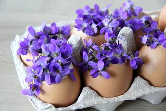 Vůně jara hmm :-)
