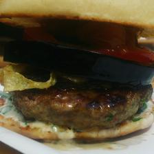 Jehněčí Burger s mango chutney a nedovo hořčičnou omáčkou luxus