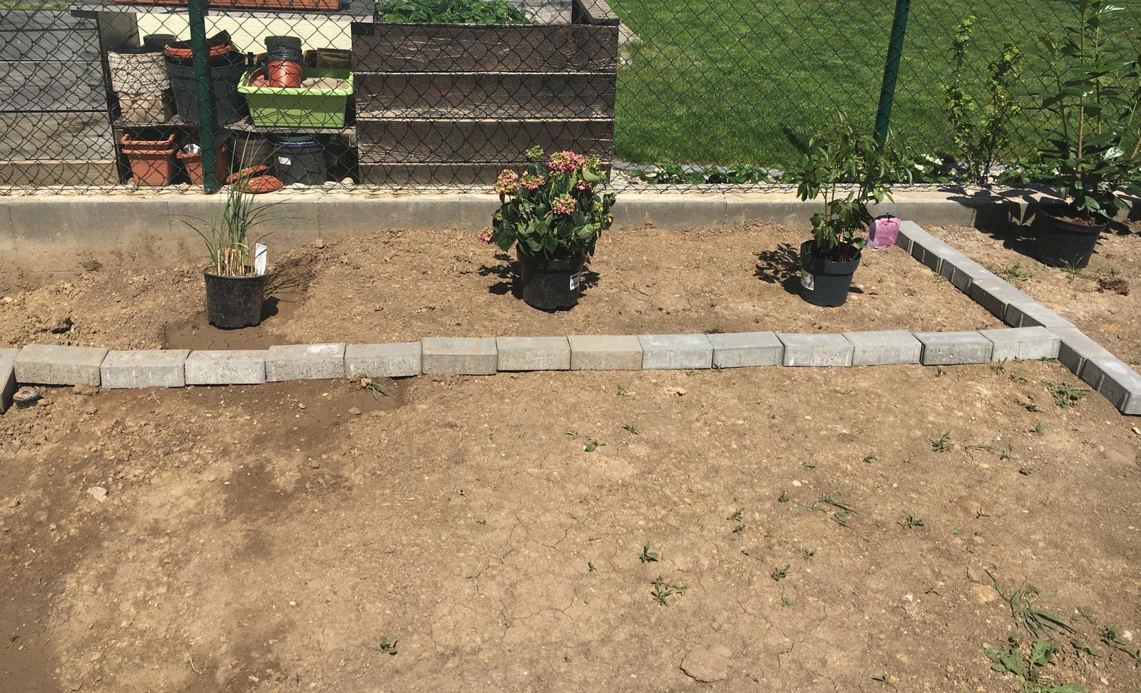 Exteriér domu snů - Trávina, hortenzie, pivonka