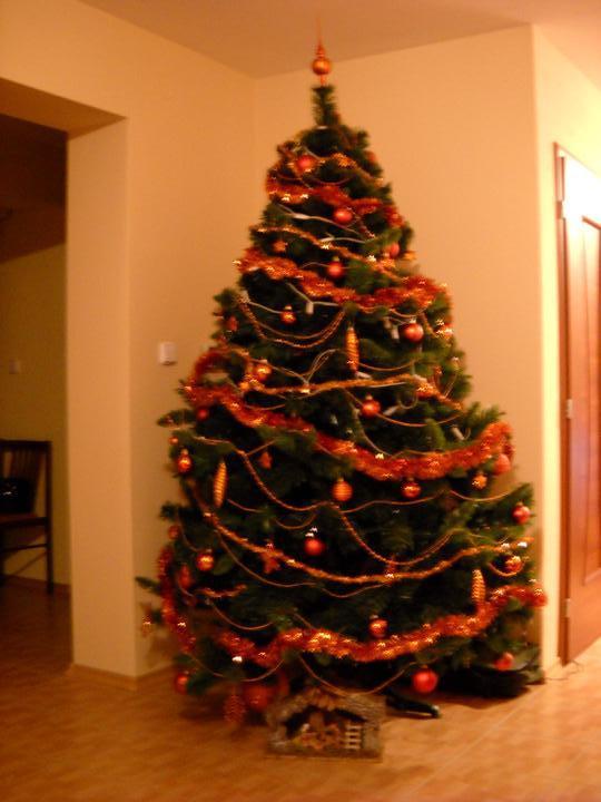 Náš domček - Vianoce 2009 /trochu nekvalitná fotka/