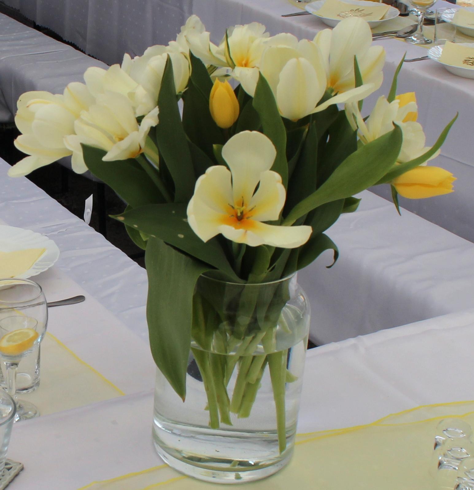 Tulipány svetložlté-žlté-biele - Obrázok č. 1